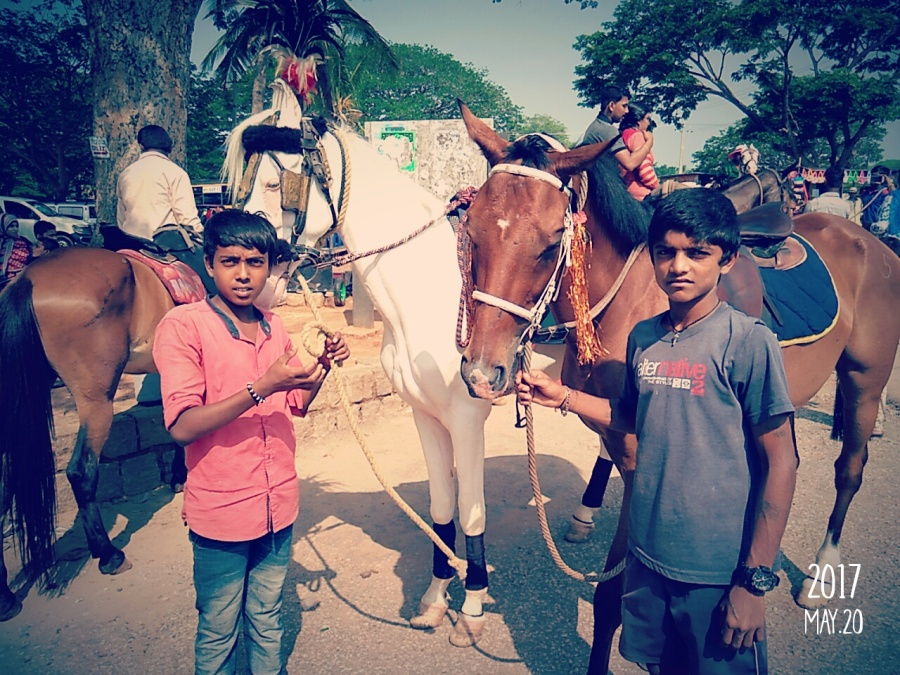 Boys offering horse ride