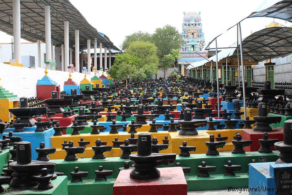 Bangalore To Kotilingeshwara Temple Bangalore Vibes