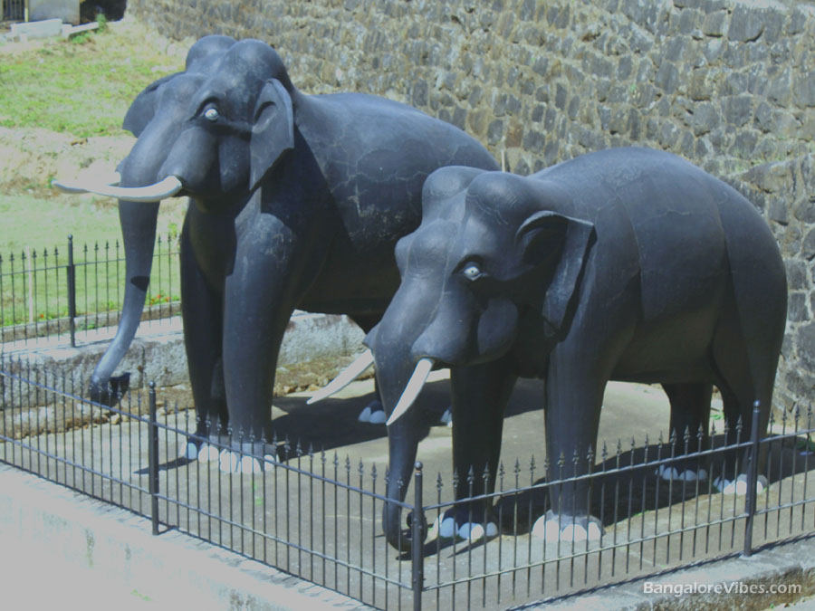 Masonary Elephants